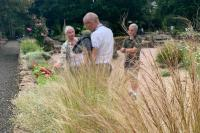 SW in Bloom Sensory Garden Grasses