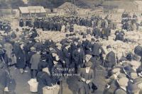 The Livestock Market - Tavistock Goose Fair 1912